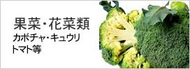 果菜・花菜類